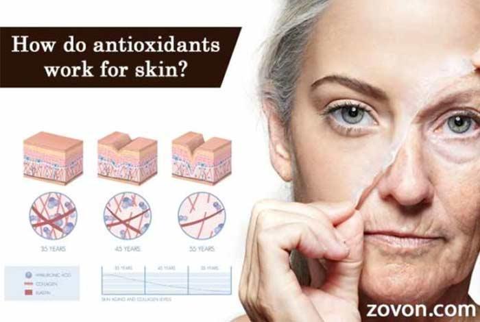 9 how do antioxidants work for skin