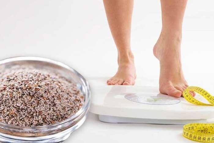 how psyllium husk helps in weight management