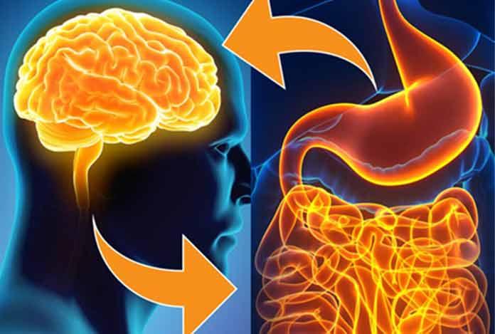 Deepak Chopra On Gut Mind andWellness