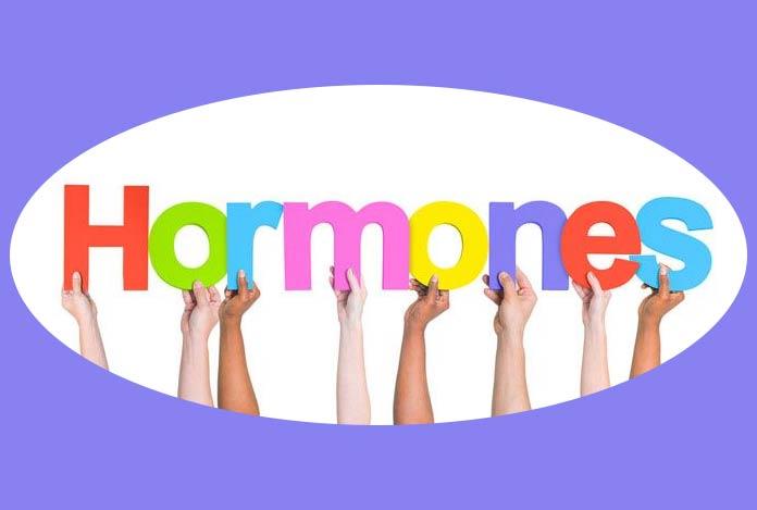 Hormones – The Secret to Healthy Metabolism