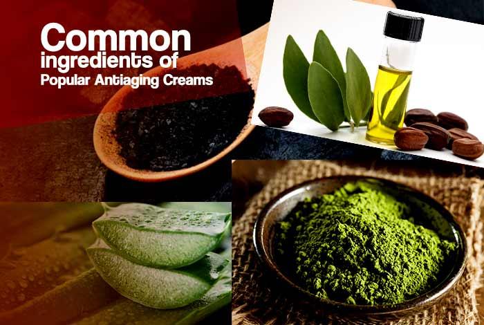 common ingredients of anti aging creams for men