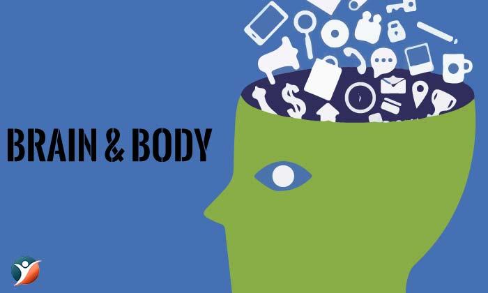 Brain & Body